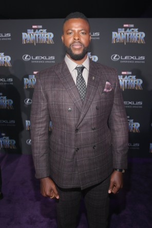 HOLLYWOOD, CA - JANUARY 29: Actor Winston Duke at the Los Angeles World Premiere of Marvel Studios' BLACK PANTHER at Dolby Theatre on January 29, 2018 in Hollywood, California. (Photo by Jesse Grant/Getty Images for Disney) *** Local Caption *** Winston Duke