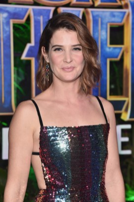 HOLLYWOOD, CA - JANUARY 29: Actor Cobie Smulders at the Los Angeles World Premiere of Marvel Studios' BLACK PANTHER at Dolby Theatre on January 29, 2018 in Hollywood, California. (Photo by Alberto E. Rodriguez/Getty Images for Disney) *** Local Caption *** Cobie Smulders