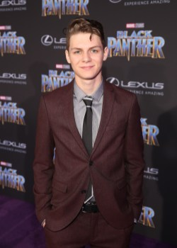 HOLLYWOOD, CA - JANUARY 29: Actor Ty Simpkins at the Los Angeles World Premiere of Marvel Studios' BLACK PANTHER at Dolby Theatre on January 29, 2018 in Hollywood, California. (Photo by Jesse Grant/Getty Images for Disney) *** Local Caption *** Ty Simpkins