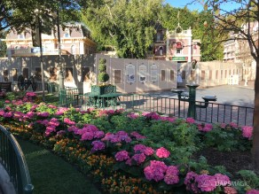 Disneyland Town Square Bricks With Walls Down in Spring-14