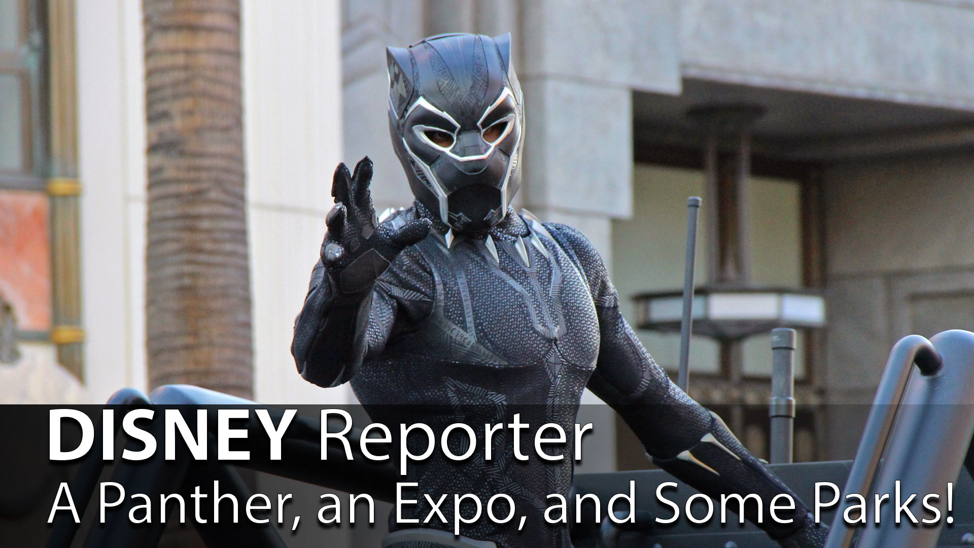 A Panther, an Expo, and Some Parks! – DISNEY Reporter