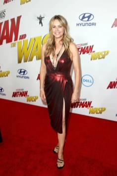 """HOLLYWOOD, CA - JUNE 25: Andrea Roth attends the Los Angeles Global Premiere for Marvel Studios' """"Ant-Man And The Wasp"""" at the El Capitan Theatre on June 25, 2018 in Hollywood, California. (Photo by Jesse Grant/Getty Images for Disney) *** Local Caption *** Andrea Roth"""