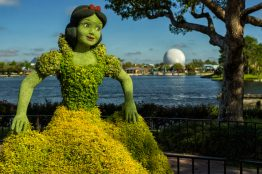 Snow White and the Seven Dwarfs return to the festival near the Germany pavilion. Topiary artists have found new ways to use a wider variety of plant materials to represent character topiary facial features, bringing Snow White's face to life. The festival, which runs March 6-June 3, 2019 at Walt Disney World Resort in Lake Buena Vista, Fla., features dozens of character topiaries, stunning floral displays, gardening seminars and the Garden Rocks concert series - all included in regular Epcot admission. (Matt Stroshane, photographer)
