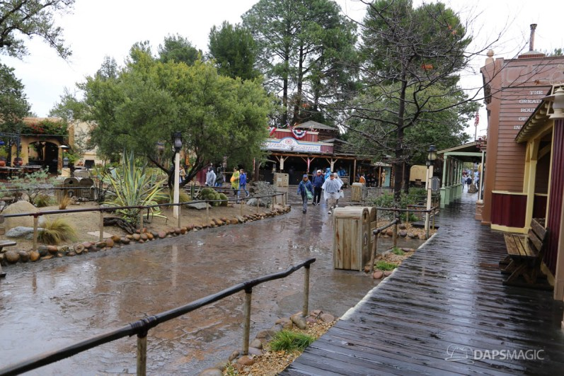 Rainy Day at the Disneyland Resort-137