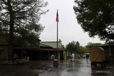 Rainy Day at the Disneyland Resort-139