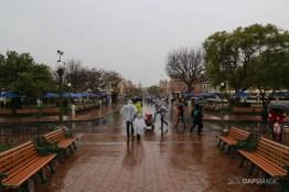 Rainy Day at the Disneyland Resort-44