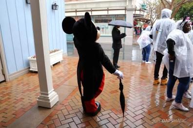 Rainy Day at the Disneyland Resort-84
