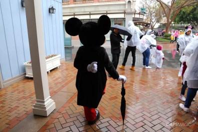 Rainy Day at the Disneyland Resort-87