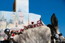 New Scrims on Sleeping Beauty Castle Refurbishment Walk Around at the Disneyland Resort-12