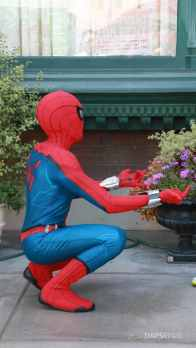 Spider-Man With New Suit at Disney California Adventure-4
