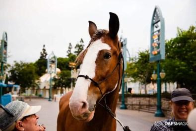 CHOC Walk in the Park at Disneyland 2019-108