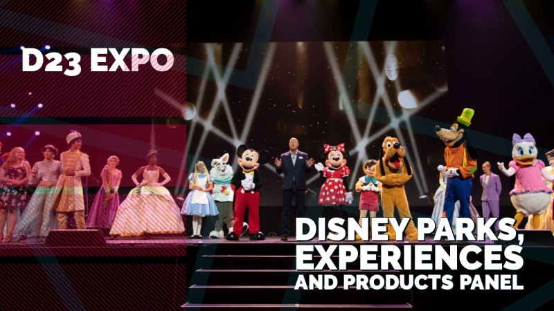 Disney Parks Experiences and Products Panel