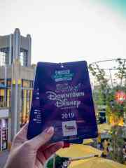2019 Taste of Downtown Disney -36
