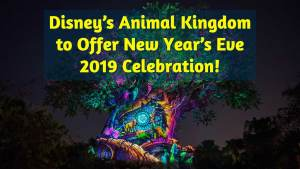 Disney's Animal Kingdom to Offer New Year's Eve 2019 Celebration!