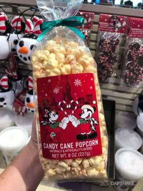 Disneyland Resort Holiday Time Merchandise 2019-61