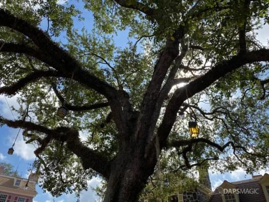 Liberty Tree in Liberty Square at Magic Kingdom-14