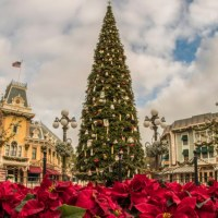 19 Festive Fun Facts About Decorating Disneyland Resort for the Holiday Season