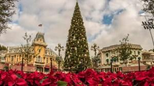 Christmas Decorations at Disneyland