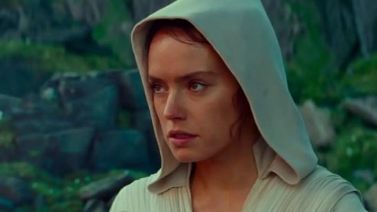 Hooded-Rey