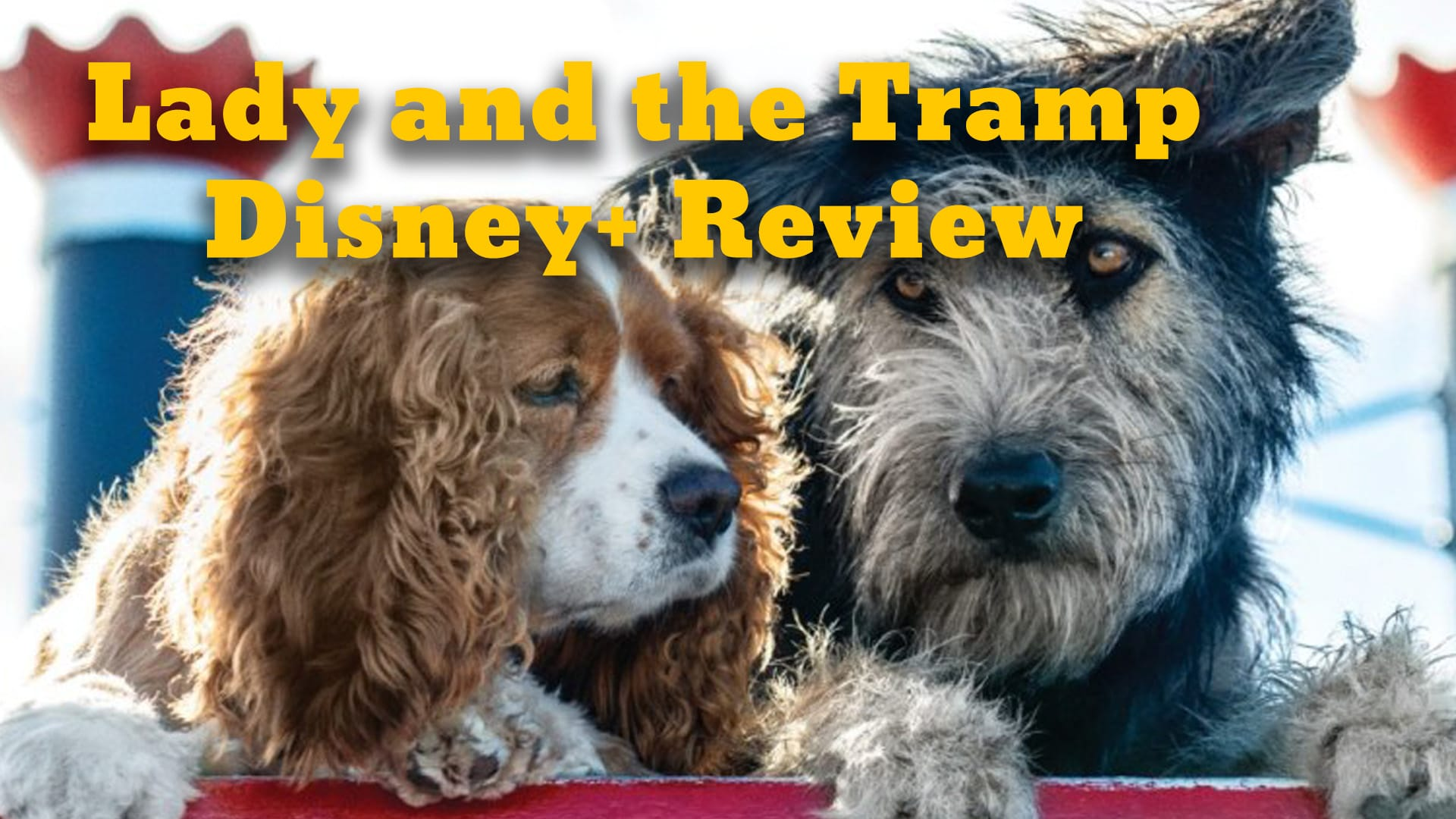 Lady and the Tramp – A Big First Movie for Disney Plus