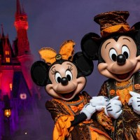 Disney Cancels 2020 Mickey's Not-So-Scary Halloween Party