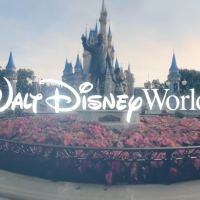 Walt Disney World Theme Parks Shows Preparation for Phased Reopening With New Video