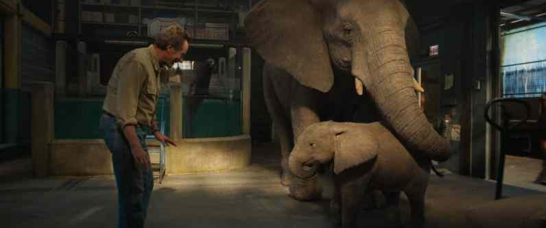 Bryan Cranston as Mack, Stella (voiced by Angelina Jolie), and Ruby (voiced by Brooklynn Prince) in Disney's THE ONE AND ONLY IVAN, based on the award-winning book by Katherine Applegate and directed by Thea Sharrock. Photo courtesy of Disney. © 2020 Disney Enterprises, Inc. All Rights Reserved.