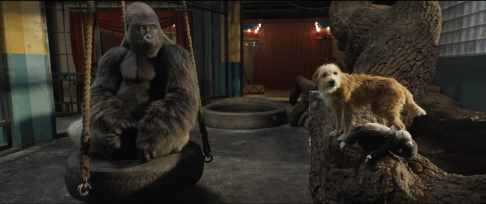 Ivan (voiced by Sam Rockwell) and Bob the dog (voiced by Danny DeVito) in Disney's THE ONE AND ONLY IVAN, based on the award-winning book by Katherine Applegate and directed by Thea Sharrock. Photo courtesy of Disney. © 2020 Disney Enterprises, Inc. All Rights Reserved.