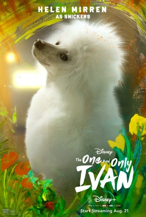 Snickers, voiced by Helen Mirren, in Disney's THE ONE AND ONLY IVAN