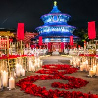 Disney Fairy Tale Weddings Resumed at Walt Disney World