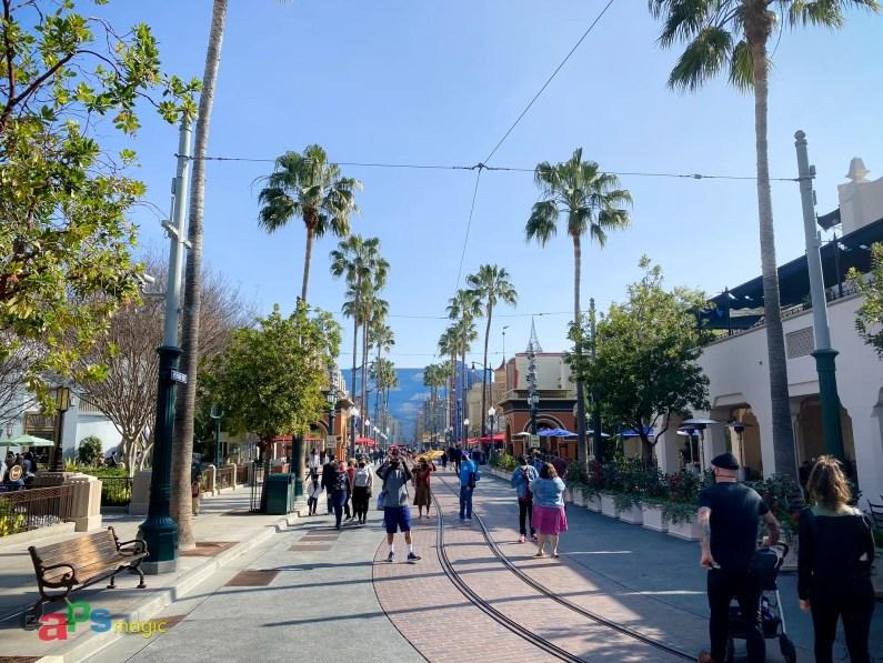 Disney California Adventure 20th Anniversary-16