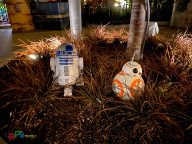 Disneyland Resort Legacy Passholder Preview of Star Wars Trading Post at Downtown Disney District-78