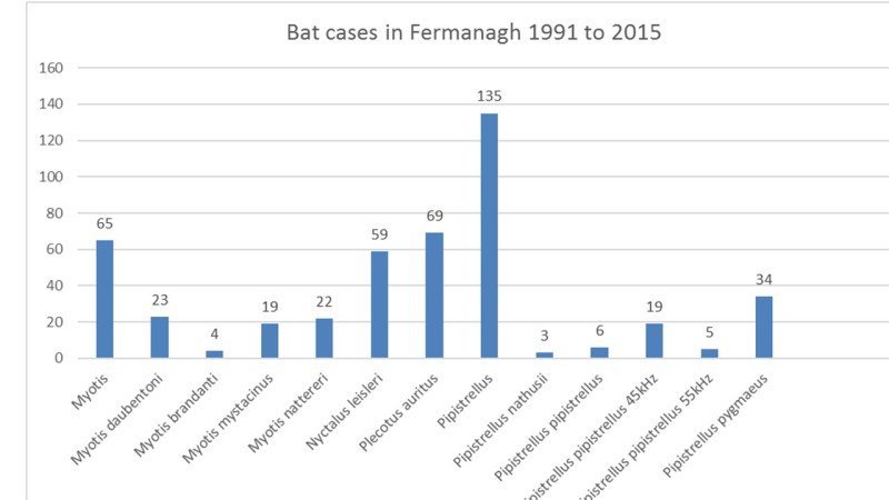 aaa dara bat graph