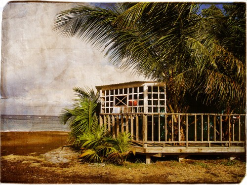 Soca-cabana.-Montserrat.-W.I.-by-darcyelliott