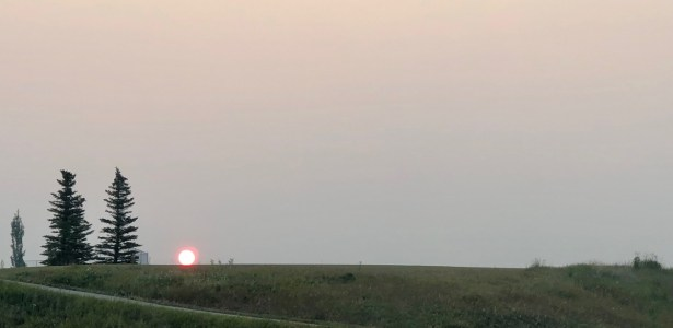 smoky dawn