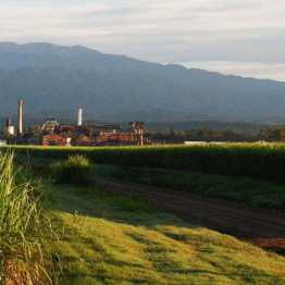 Famailla: an old (but working) sugar mill as seen from our sleeping place