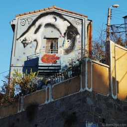 StreetArt scene in Valparaiso, Calle Ecuador: large cat mural on a building's facade.
