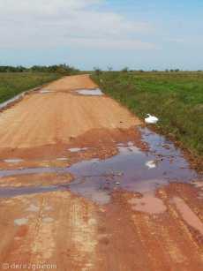 Iberá: chasing herons on the way to Carlos Pellegrini