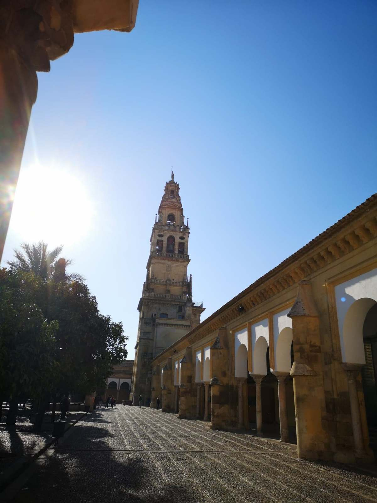 Thursday 14th Feb – La Rambla to Cordoba