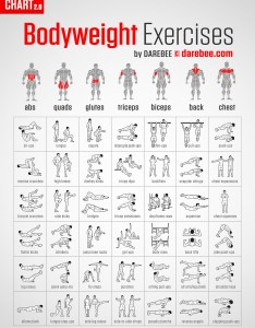 also muscle map rh darebee