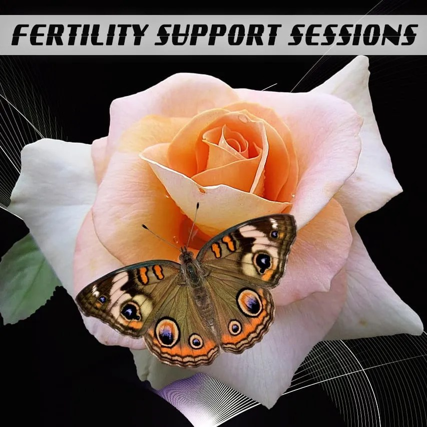 Fertility Support Sessions with Julia Loggins