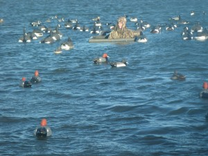 Waterfowl Hunting Finest Waterfowl Hunting Available For Ducks