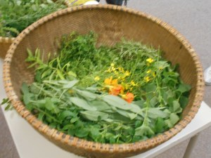 A basket of herbs for herbal tea
