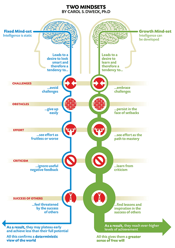 A picture of two brains representing the two mindsets, demonstrating how they differ in their responses to challenges, obstacles, effort, criticism, and success of others, and the implications for performance and development.