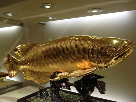 Gold plated fish for sale in Orchid Garden