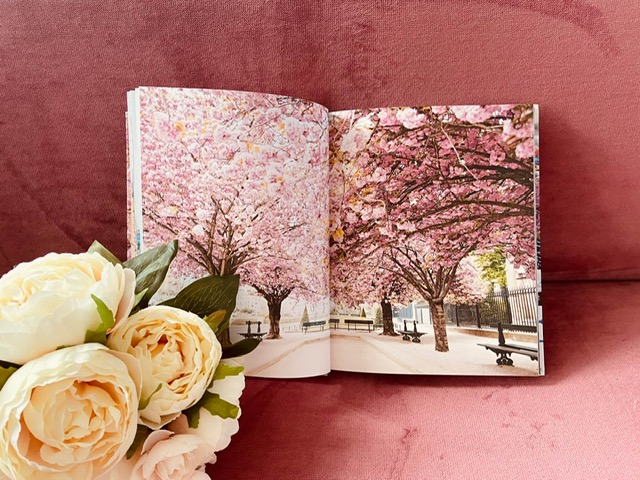 Paris in bloom peonies - Boek review | Paris in Bloom door Georgianna Lane