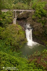 A waterfall on Honoli'i Stream and one of the old coast highway bridges