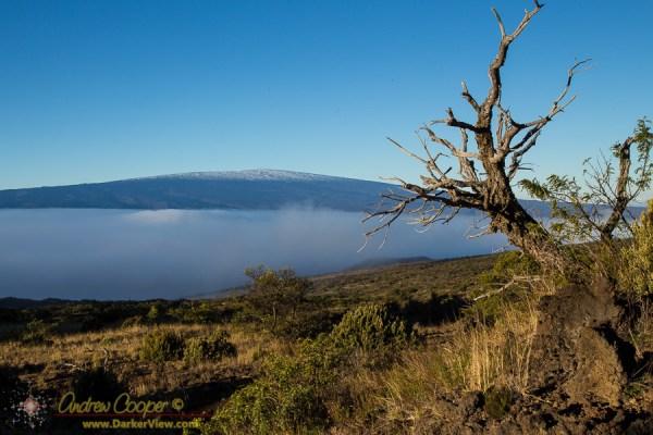 Snow Covered Mauna Loa