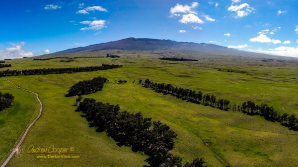 Mauna Kea from Mana Road