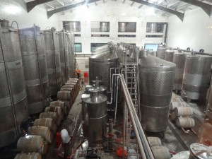 Wine vats at York winery